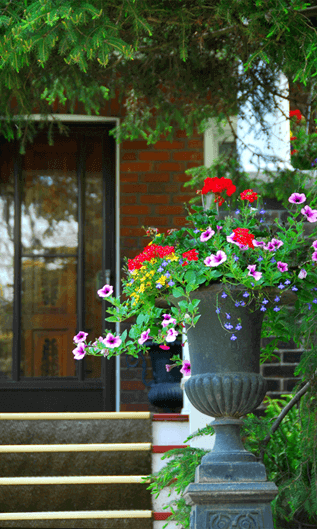 bright cheerful flowers in a grecian-style stone vase displayed in front of a lovely brick townhouse